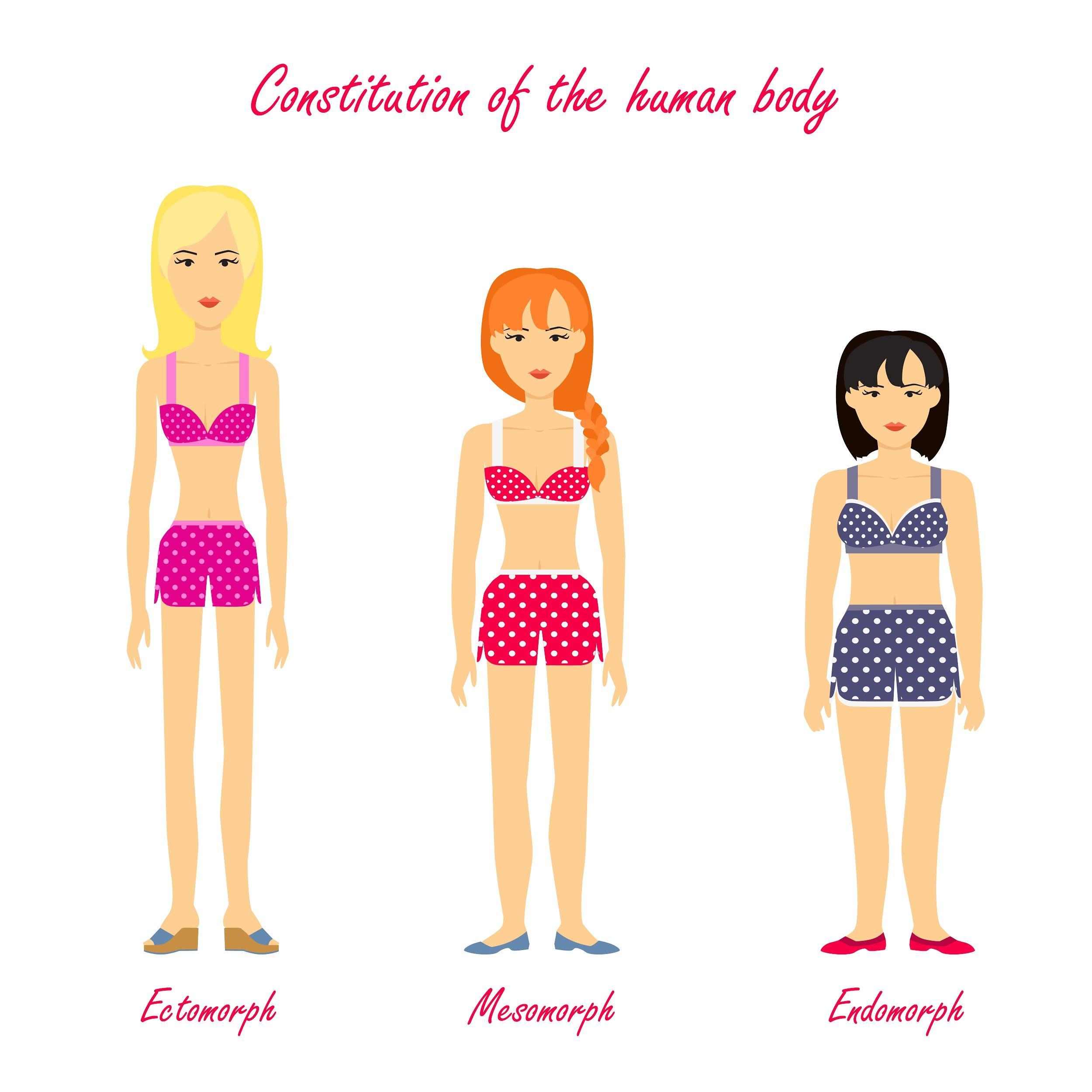 Видове тела | Соматотип и митове